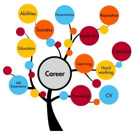 Job Coach Resume Sample Best Format